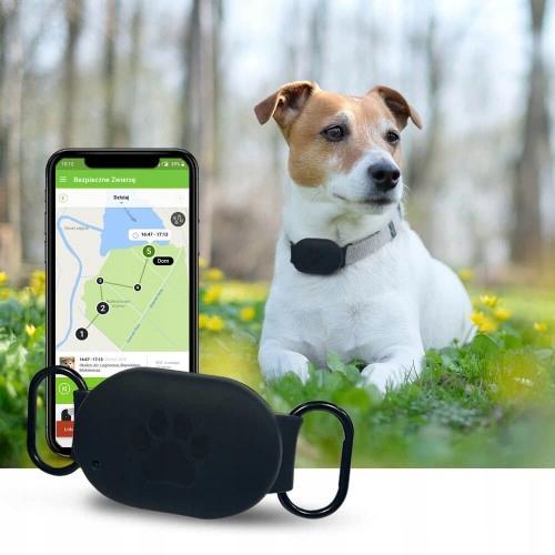 aplikacja bezpieczne zwierzę